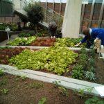 tag.werk goes green